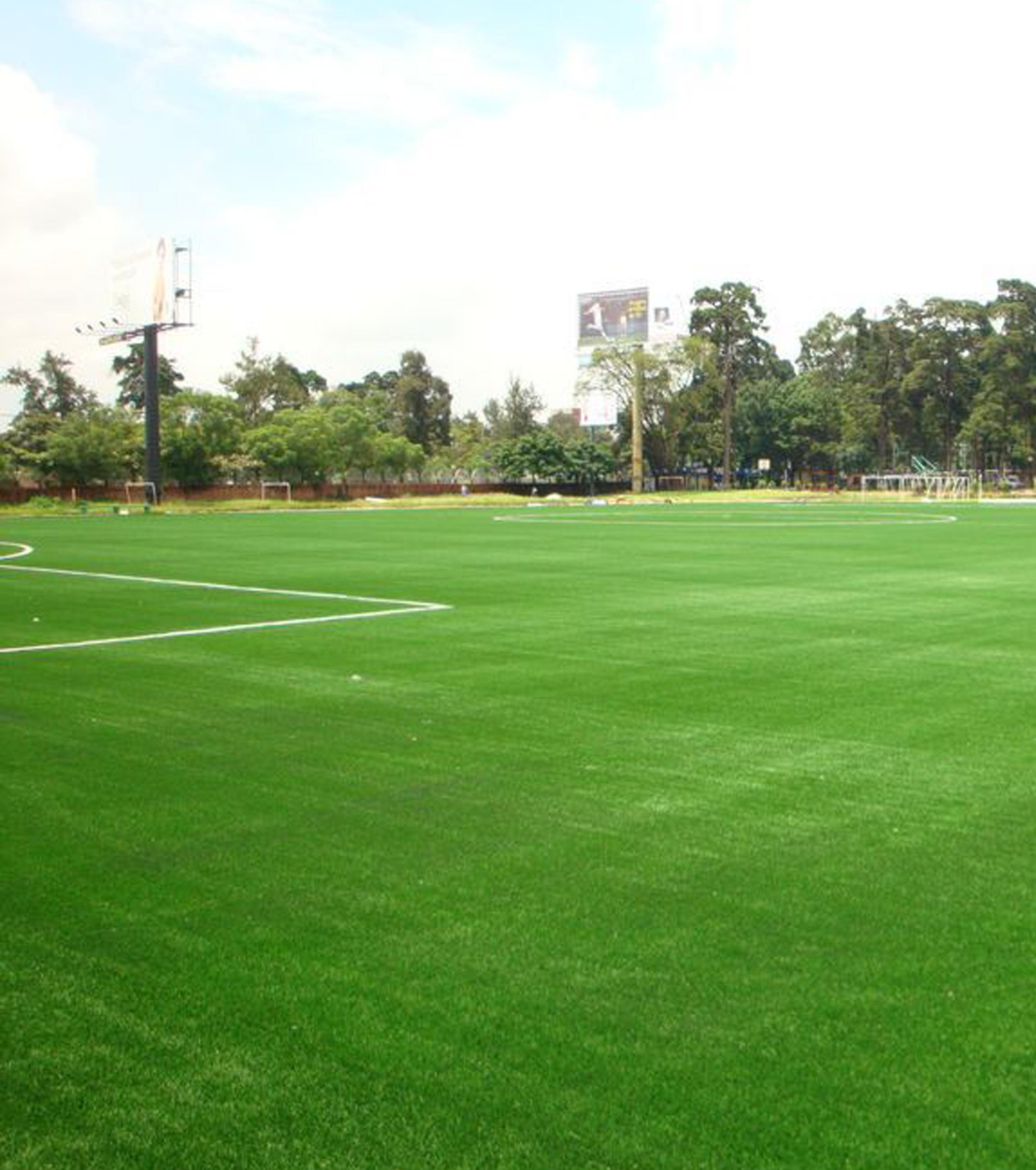 Cancha de Fútbol - Parque Samanes